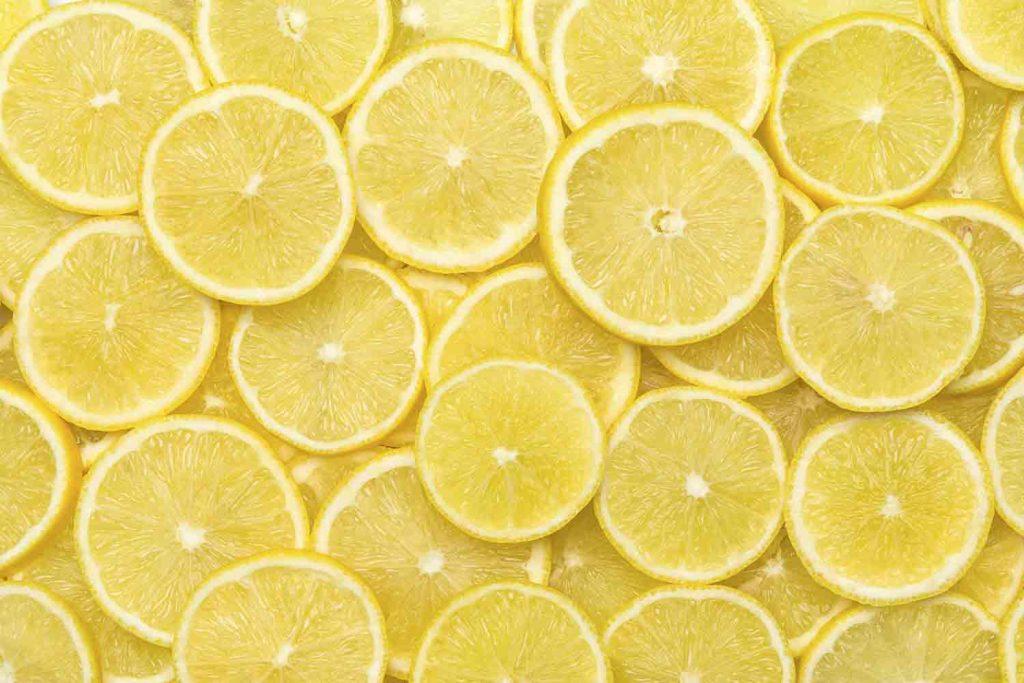 Freschezza dei limoni