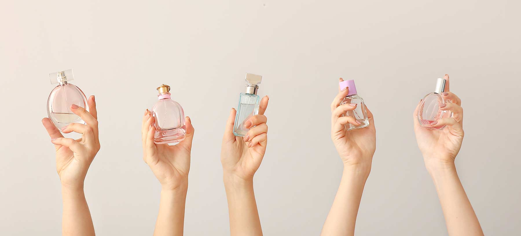 The shelf life of perfumes